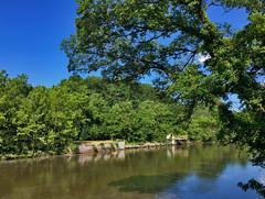 'Up a Lazy River...' -- The Occoquan River at Occoquan (VA) June 2017