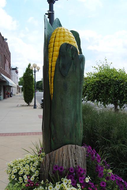 Corn, Casey, IL