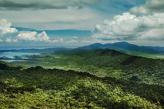 Regenwald - Rainforest