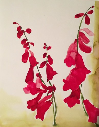 Foxgloves, 2017, watercolor on paper, 12x16