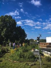 062617_GEOL rooftop garden_13