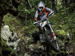 KTM FREERIDE 250 R 2014 - 10