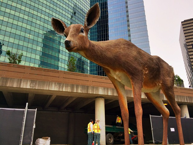 Giant deer invades Chicago Riverwalk!