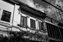Kampot Windows