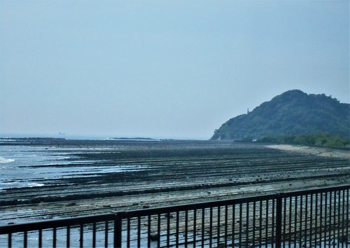 jp-aoshima-Obi-côte (2)