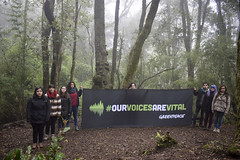 """""""Our Voices are Vital"""" Activity in Temuco, Chile"""