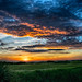 Sunrise at the Celery Fields by DonMiller_ToGo