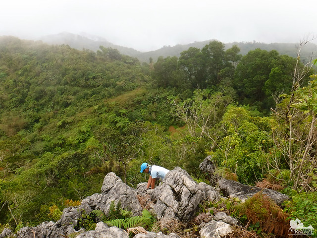 Mt. Manunggal Summit