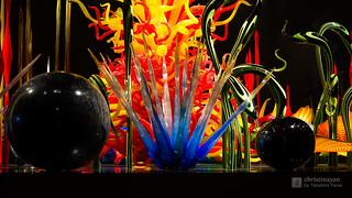 TOYAMA Glass Museum (富山ガラス美術館)