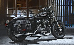 Harley-Davidson XL SPORTSTER 1200 CUSTOM 2017 - 15