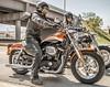 Harley-Davidson XL SPORTSTER 1200 CUSTOM CA 2016 - 5