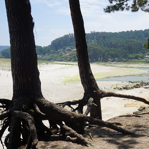 foto Ilhas Cies - Vigo junho'17 18
