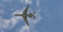 The New Bird Of Dassault
