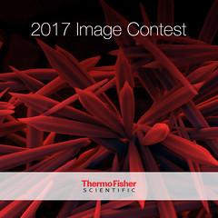 2017 Image Contest