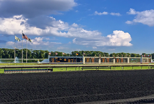 2017-07-07_Arlington_Park, Apple iPhone 6, iPhone 6 back camera 4.15mm f/2.2