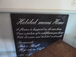 'Habitat means home; a flower is happiest in its own home'