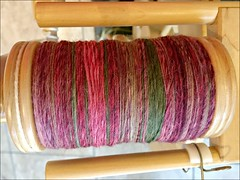 Moss Rose, ready to ply