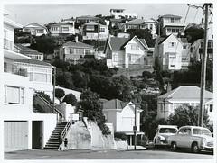 Hillside dwellings Mount Victoria, Wellington