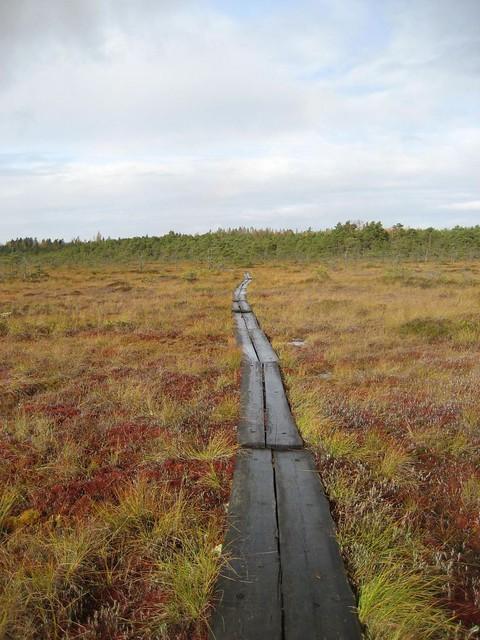 Valkmusan kansallispuisto 0916-25_zpstrcujrvp