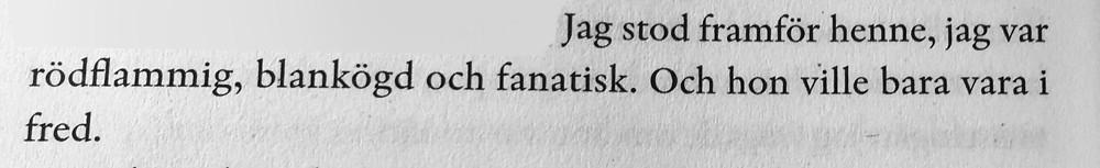 Geir Gulliksen - Berättelse om ett äktenskap