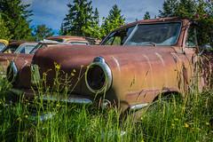 Rusting Studebaker