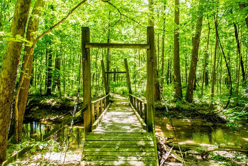 Asherwood Nature Preserve - June 5, 2017