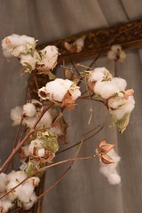 SRL cotton bouquet