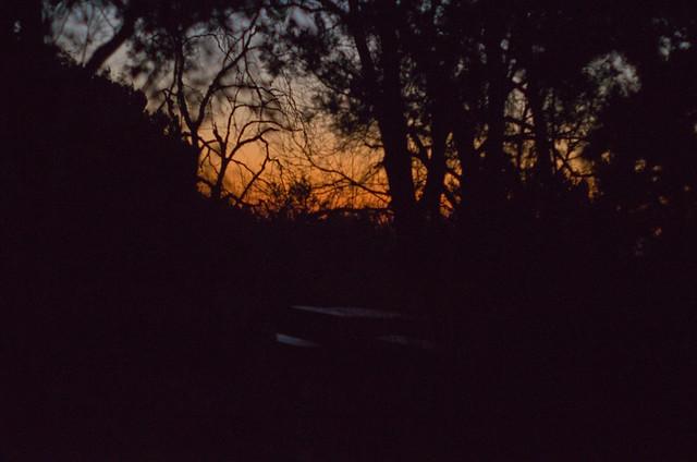 Lonesome Sunset
