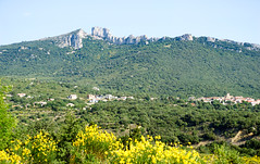 8238 Château de Peyrepertuse
