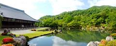 Tenryu-ji, Sogenchi Teien (Garden) -8 (June 2017)