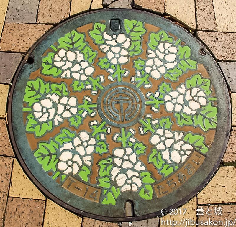 shizuoka-manhole