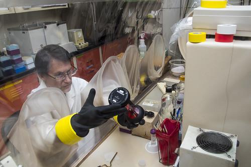 Steven Ricke Lab