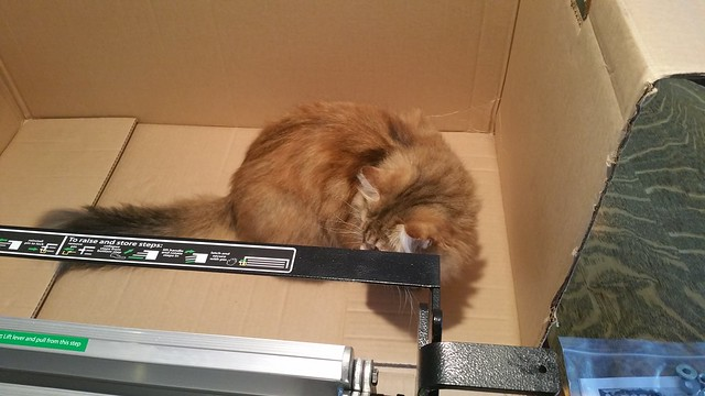 Everything must be inspected by QA cat - 05