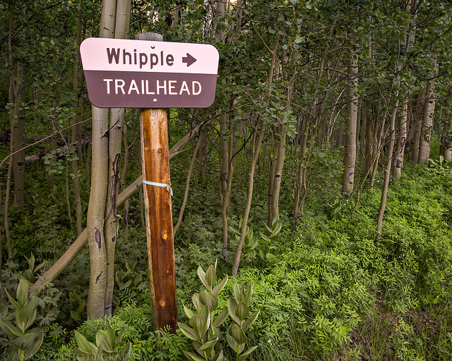 Whipple Trailhead