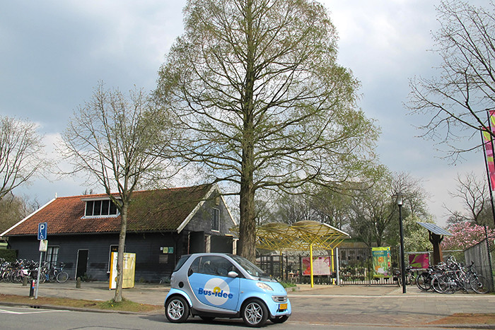 Utrecht-Botanische-Tuinen-2