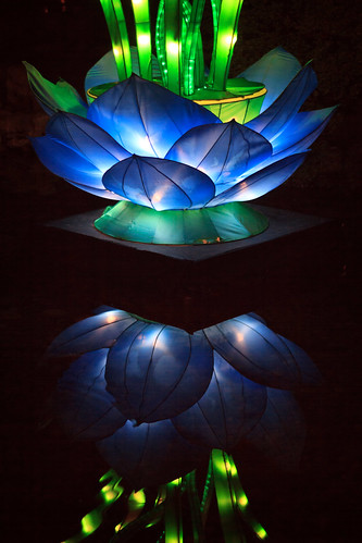 lansu chinese garden lanternviewing portland oregon night dusk pond reflection