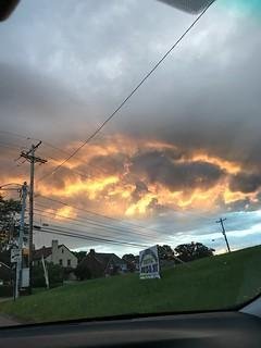 Wild sky color