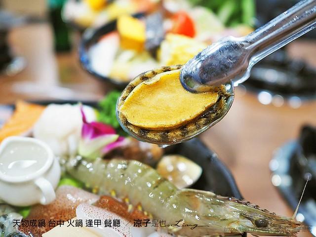 天物成鍋 台中 火鍋 逢甲 餐廳  1