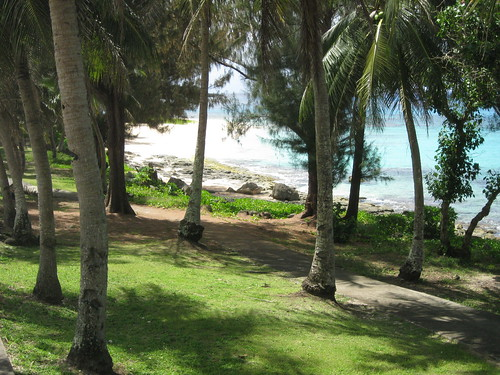 tinian mariana island beach palm tree kummerle tropical