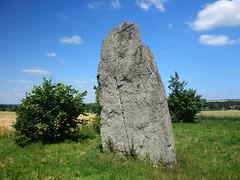 Le menhir dit « La Pierre Longue » près d'Iffendic - Ille-et-Vilaine - Juin 2017 - 04 - Photo of Boisgervilly