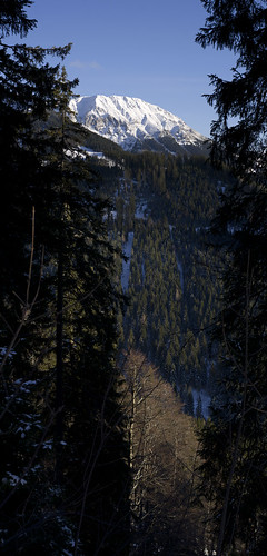 View at Hohe Veitsch