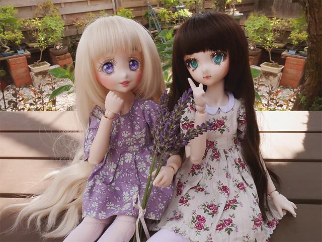 [Mini Dollfie Dream] Minato et Suzume 35691340181_ab830fdf73_z