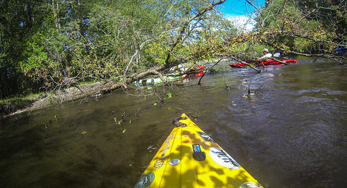Edisto River Rope Swing and Beer Commercial Float-8