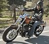 Harley-Davidson XL Sportster 1200 Custom 2013 - 22