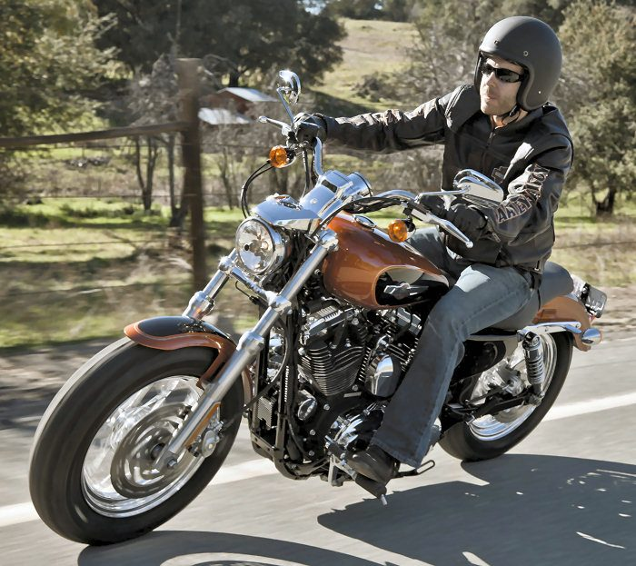 Harley-Davidson XL SPORTSTER 1200 CUSTOM 2017 - 21