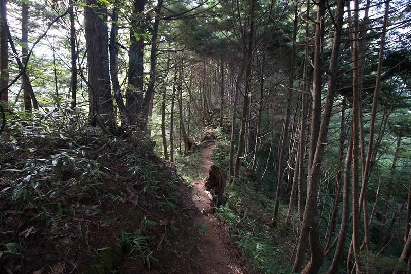 20150808-空木岳-0087.jpg