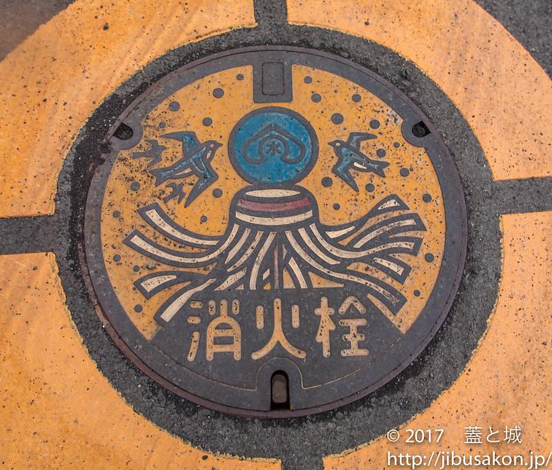 shizuoka-manhole-2