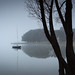 Silent morning by gregory_j_evans