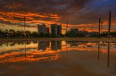 Baltimore: Rash Field puddle reflection sunrise