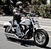 Harley-Davidson 1584 DYNA FAT BOB FXDF 2009 - 9